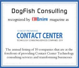 DogFish Consulting